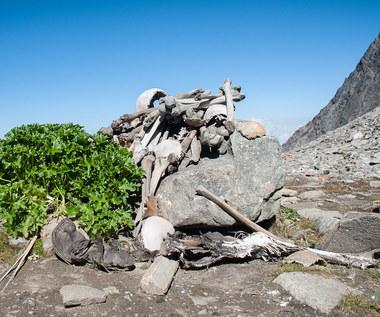 Jezioro Szkieletów w Himalajach. Dlaczego jest pełne kości?