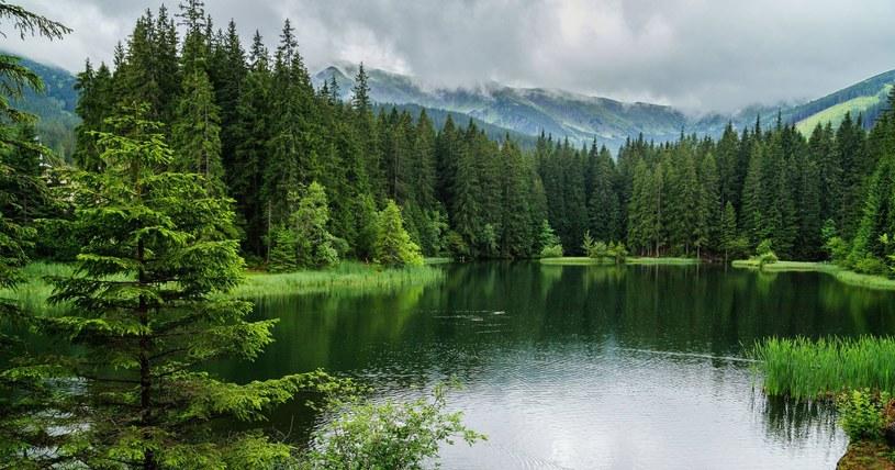 Jezioro Vrbickie jest bardzo malownicze /123RF/PICSEL