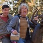 """Jim Carrey i Jeff Daniels w """"Głupim i głupszym 2"""""""