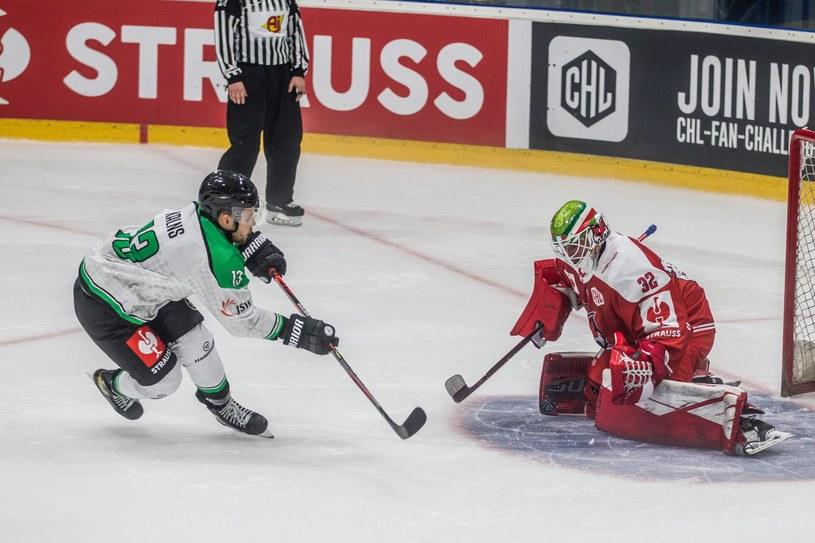 JKH GKS Jastrzębie - Bolzano Foxes /Fot. Michał Chwieduk /Newspix