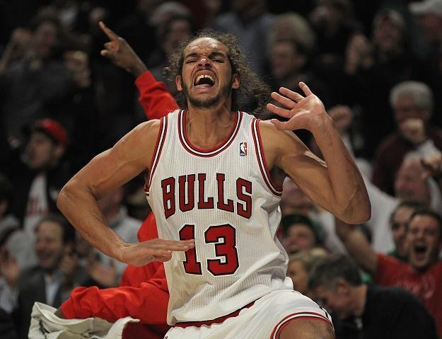 Joakim Noah zebrał aż 17 piłek dla Bulls /AFP