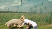 Joanna Krupa marzy o ranczo