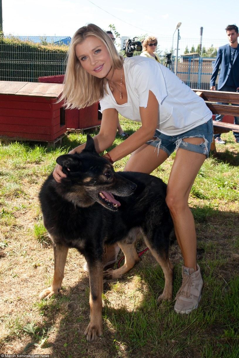 Joanna Krupa w schronisku dla bezdomnych zwierząt w Słupsku /Marcin Kamiński /East News