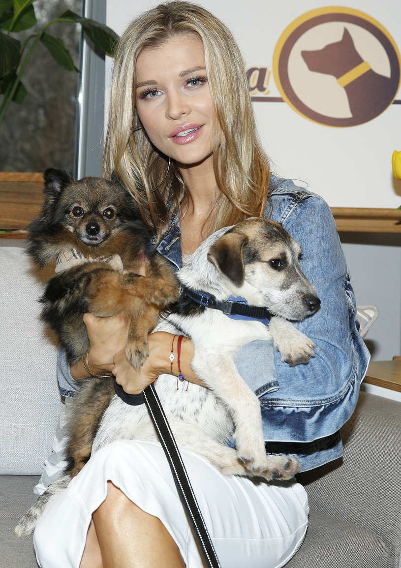 Joanna Krupa została sama z psami /Podlewski /AKPA