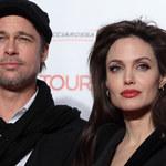 Jolie i Pitt: Miliony dla zwierząt