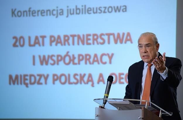 Jose Angel Gurria /fot. Jacek Turczyk /PAP
