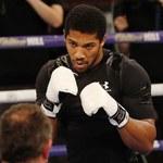 Joshua: Wilder woli walczyć z Furym, mimo że on nie ma tytułów