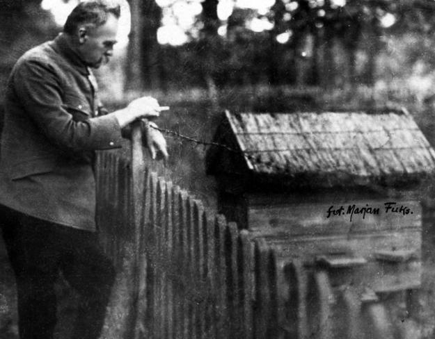 Józef Piłsudski pali papierosa oparty o płot i obserwuje ul w Sulejówku /Z archiwum Narodowego Archiwum Cyfrowego