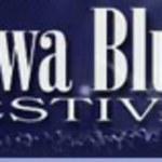 Jubileuszowa Rawa Blues