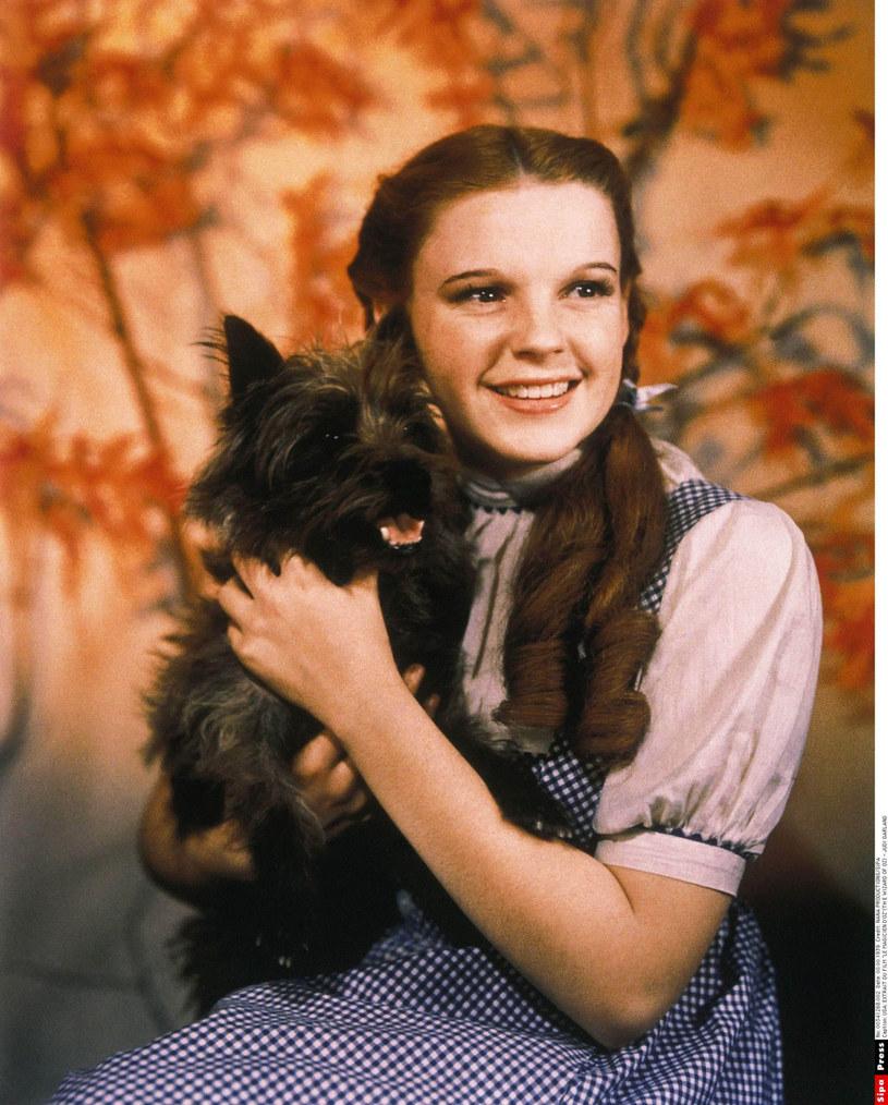 """Judy Garland z terrierką Terry w """"Czarnoksiężniku z Krainy Oz"""" /NANA PRODUCTIONS/SIPA /East News"""