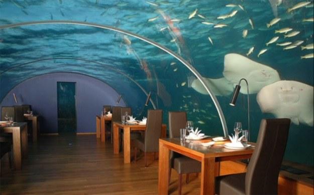 Jules Undersea Lodge to luksusowy podwodny hotel należący do Iana Koblicka /materiały prasowe