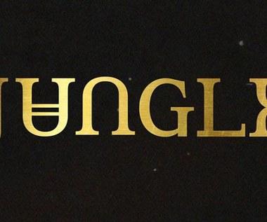 Jungle na dwóch koncertach w Polsce!