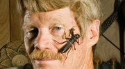 Justin Schmidt: Dał się użądlić 83 owadom. Który jest najgorszy?