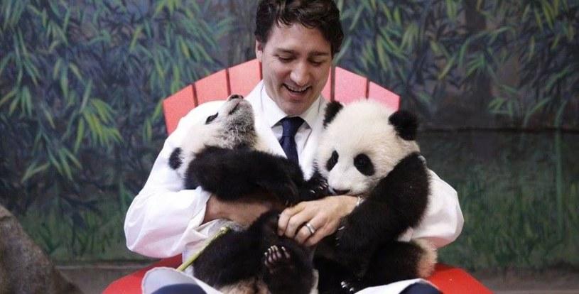 Justin Trudeau z pandami /Twitter