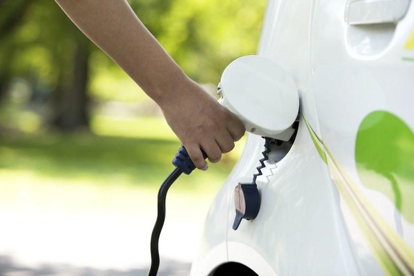 Już 20 proc. sektora MSP rozważa zakup aut hybrydowych lub elektrycznych /123RF/PICSEL