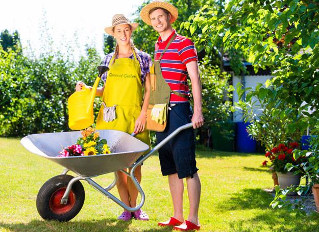 Już najwyższy czas rozpocząć prace w ogrodzie /123RF/PICSEL