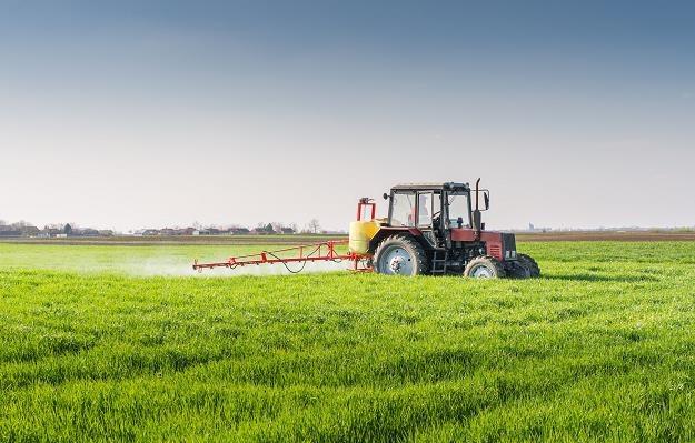 Już od dłuższego czasu pośrednicy informowali, że obrót na rynku ziemi rolnej zamarł /©123RF/PICSEL