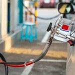 Już prawie 700 stacji ładowania samochodów elektrycznych
