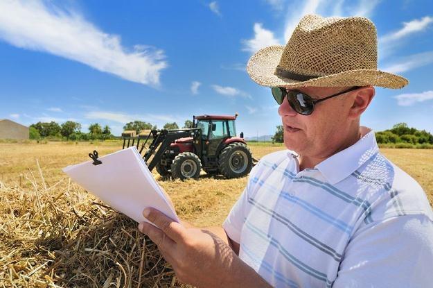 Już za trzy lata obcokrajowcy będą mogli bez ograniczeń kupować polskie grunty /©123RF/PICSEL