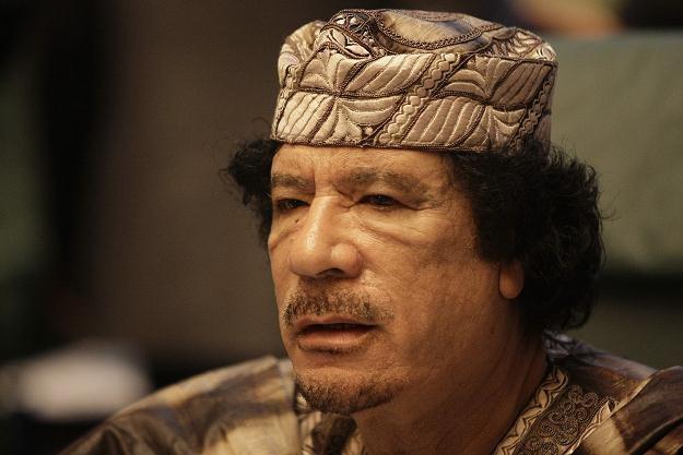 """""""Kadafi jest jak osaczone zwierzę"""" /AFP"""
