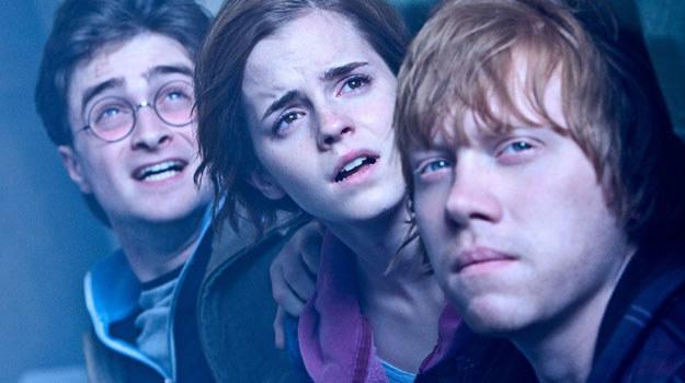 """Kadr z filmu """"Harry Potter i Insygnia Śmierci: Część 2"""" /materiały dystrybutora"""