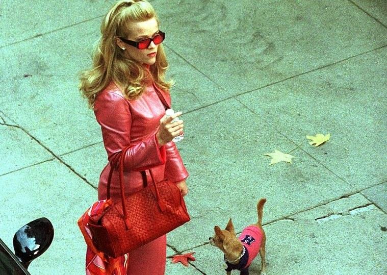 "Kadr z filmu ""Legalna blondynka"" /Eric Ford /Getty Images"