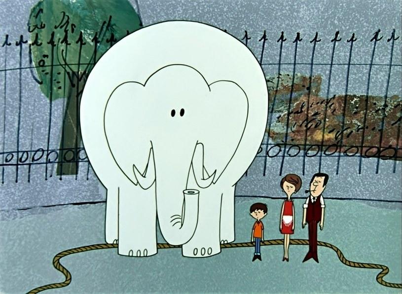 """Kadr z filmu """"Proszę słonia"""" /materiały programowe"""