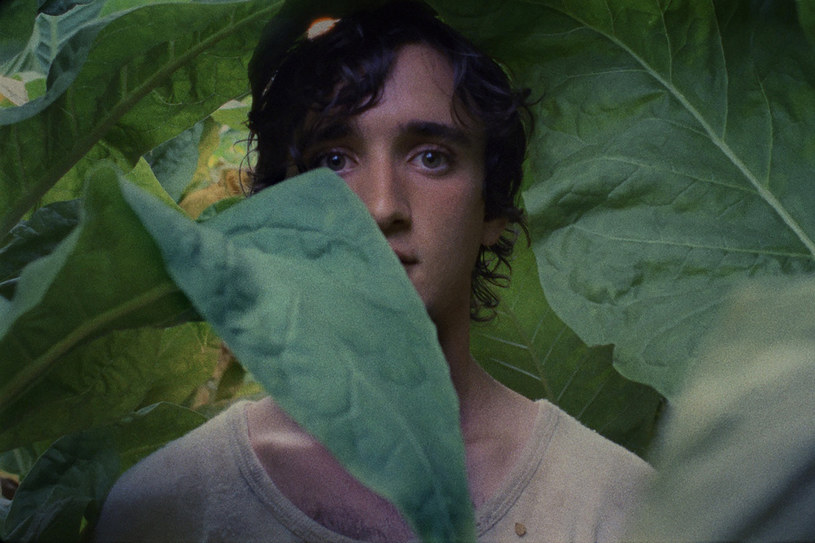 """Kadr z filmu """"Szczęśliwy Lazzaro"""" Alice Rohrwacher, nagrodzonego na festiwalu w Cannes za scenariusz /materiały prasowe"""