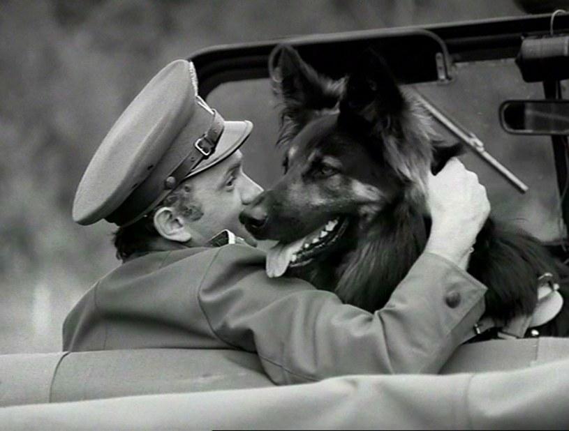 """Kadr z serialu """"Przygody psa Cywila"""" (1968-1970) /INPLUS /Getty Images"""