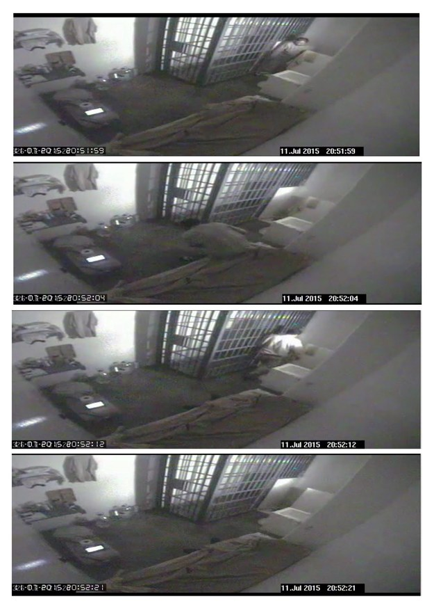 """Kadry z nagrania z więziennego monitoringu, na których widać ucieczkę """"El Chapo"""" /National Commission of Security of Mexico (CNS)/HANDOUT /PAP/EPA"""