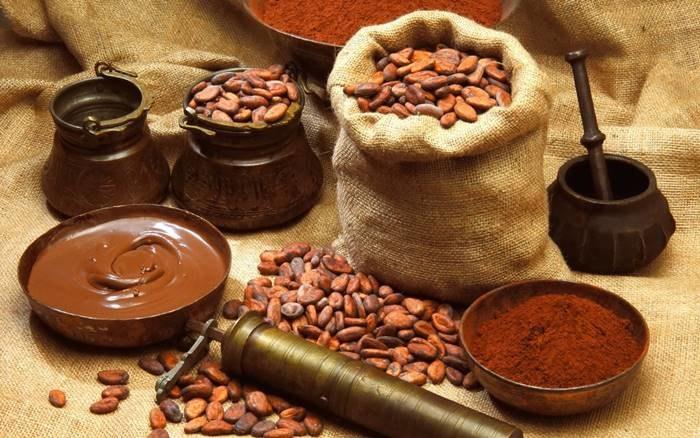 Kakao a przeciwutleniacze /© Photogenica