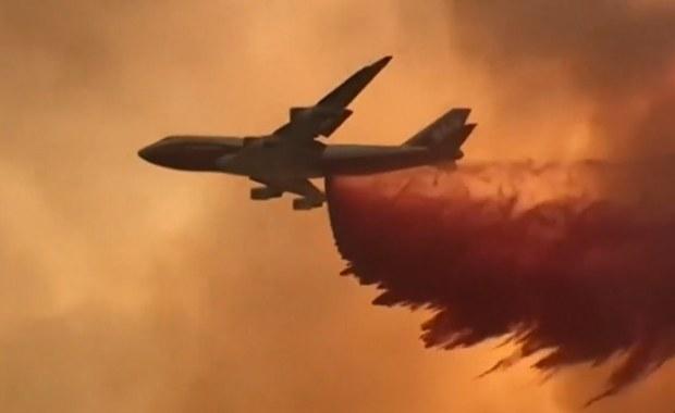 Kalifornia walczy z ogniem. Powierzchnia pożaru czterokrotnie większa niż San Francisco