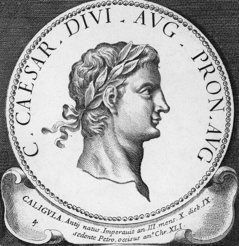 Kaligula uchodził za najbardziej rozwiązłego cesarza /Getty Images/Flash Press Media
