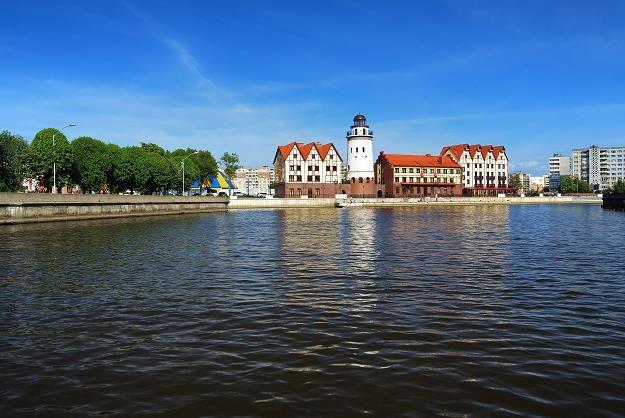 Kaliningrad - Rosja /©123RF/PICSEL