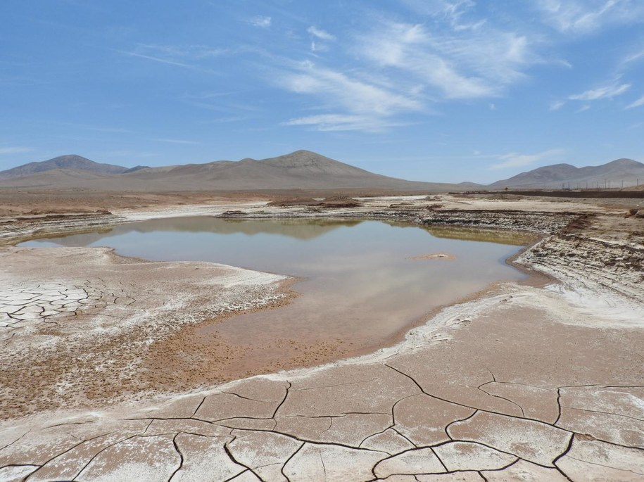 Kałuże wody na pustyni Atacama /Carlos González Silva /Materiały prasowe