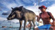 Kamapua - prosiak, który został surferem!