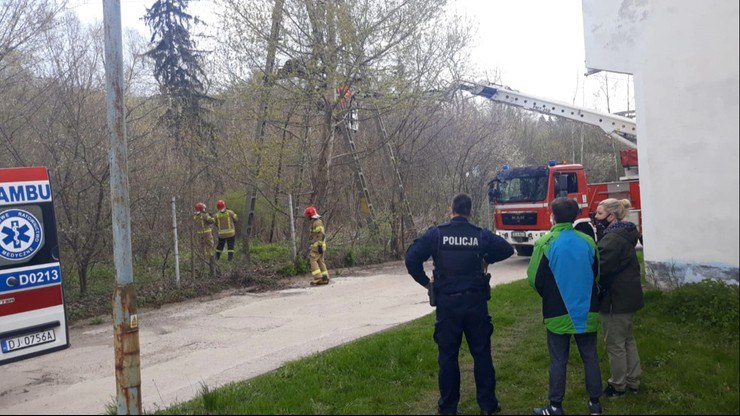 Kamienna Góra: Służby na miejscu zdarzenia /KPP Kamienna Góra /Policja