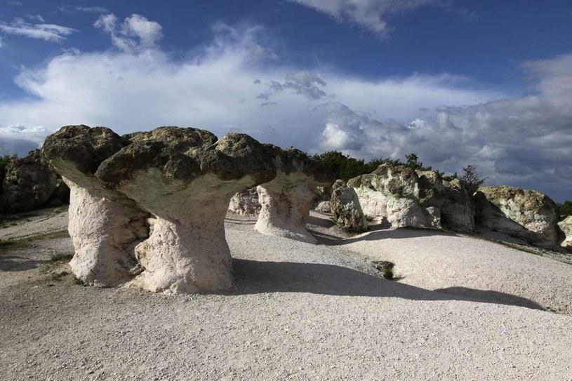 Kamienne grzyby w Beli Plast, Bułgaria /123RF/PICSEL