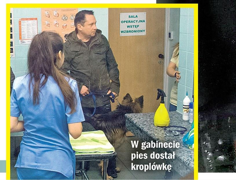 Kamil z psem na zabiegu (Źródło: Życie na Gorąco) /- /Życie na gorąco