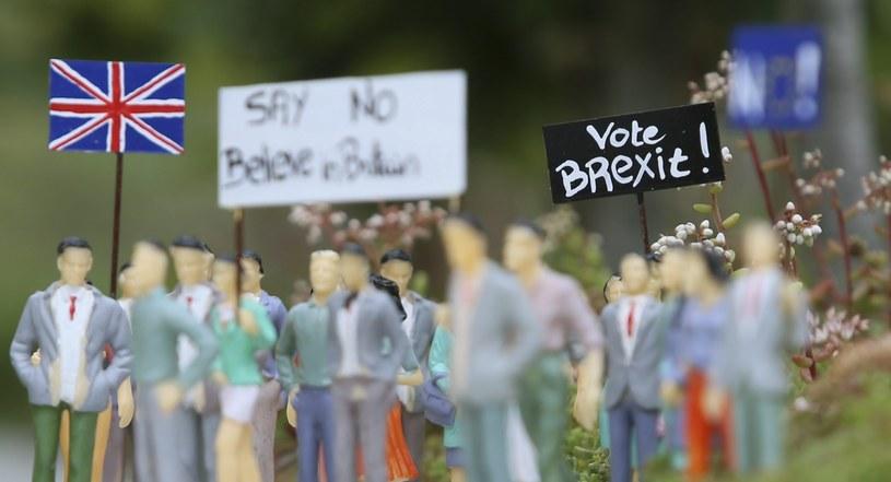 Kampania za wyjściem Wielkiej Brytanii z UE /OLIVIER HOSLET /PAP/EPA