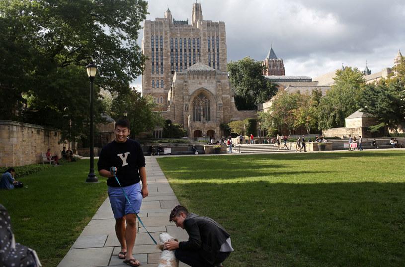 Kampus uniwersytecki w Yale; zdj. ilustracyjne /AFP