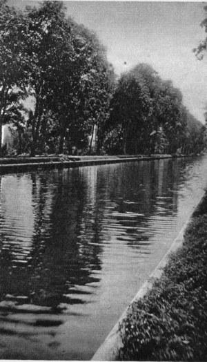 Kanał Ogińskiego w Telechanach, po pogłębieniu i oczyszczeniu /Archiwum Tomasza Basarabowicza