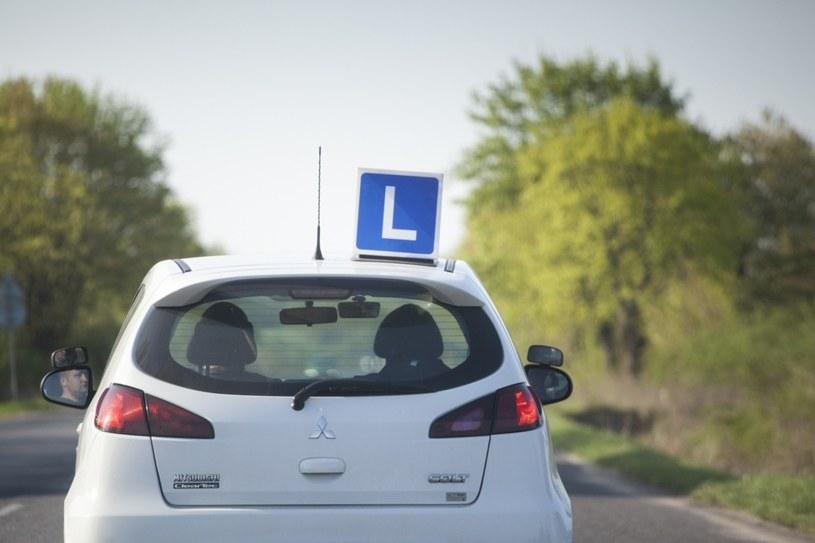 Kandydaci na kierowców nie muszą się martwić. Zmian na razie nie będzie /Maciej Łuczniewski /Reporter