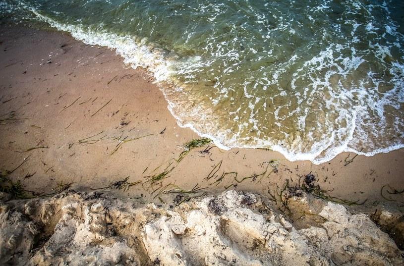 Kąpieliska nad Bałtykiem zamknięte z powodu zakwitu sinic /Fot. Karolina Misztal /Reporter