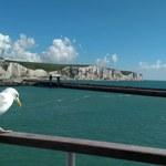 Kapitan zawrócił prom, żeby ratować człowieka w kanale La Manche