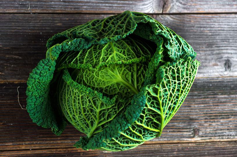 Kapusta włoska znakomicie nadaje się na surówki, właśnie ze względu na cienkie liście i delikatny smak /123RF/PICSEL