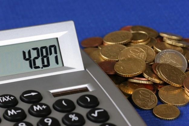Karą za wykroczenie skarbowe jest grzywna określona kwotowo /© Panthermedia
