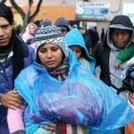 """""""Karawana"""" tysiąca migrantów zmierza do granicy USA. Ostra reakcja Trumpa"""