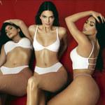 Kardashianowie byli inspiracją dla serialu Netflixa?!
