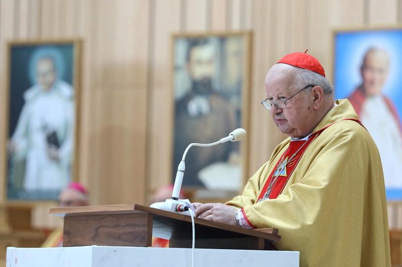 Kardynał Stanisław Dziwisz /Rafał Guz /PAP